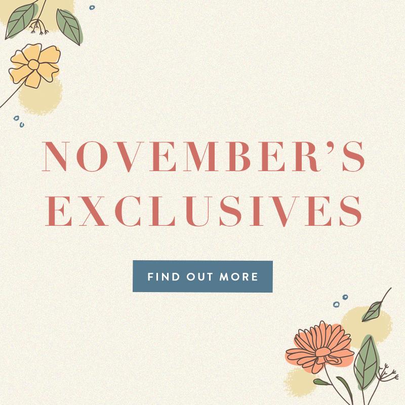 Nov 2020 Exclusives